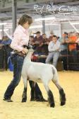 Arkansas State Fair Division Winner