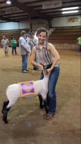 County Fair Champion Market Lamb