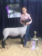 Champion Crossbred Adair County